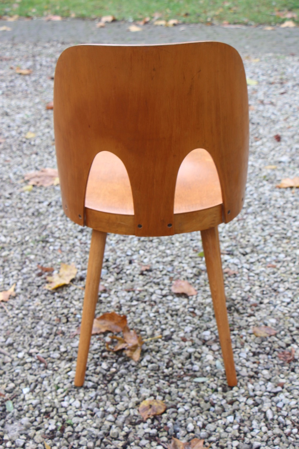Oswald Haerdtl chair, double bow, vintage chairs, Tatra production