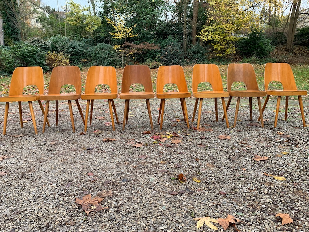 vintage chairs, oswald haerdtl, european design, vintage furniture, dining chairs, vintage dining chairs, wooden chairs, wooden dining chairs, Thonet