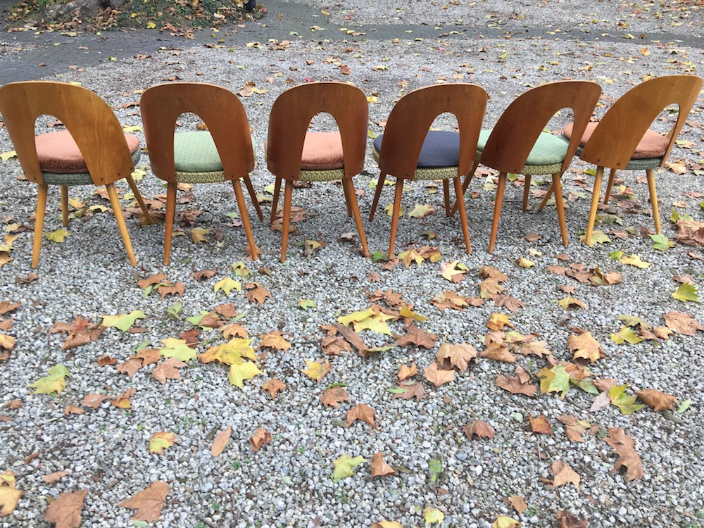 Antonin Suman vintage chairs for Tatra