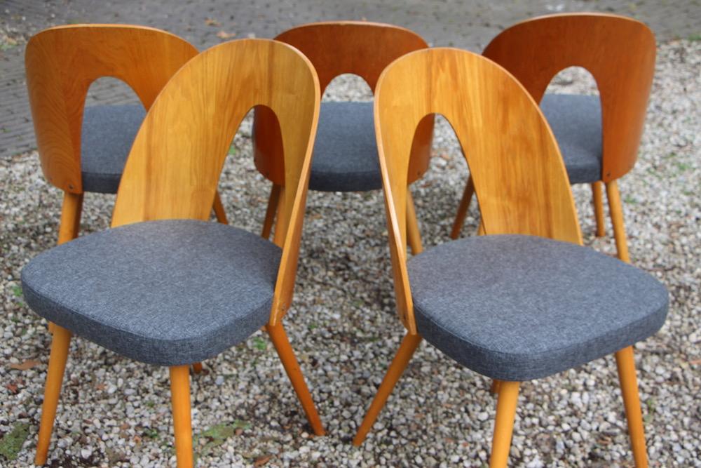 vintage Tatra chairs by Antonin Suman