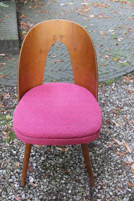 vintage design Tatra chairs by Antonin Suman